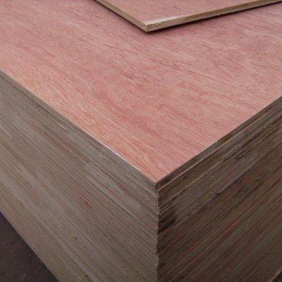 Bintangor - Meranti Plywood